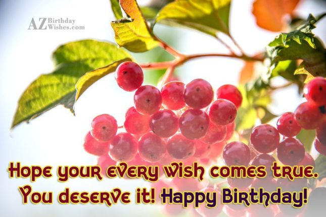 Hope your every wish comes true happy birthday - AZBirthdayWishes.com