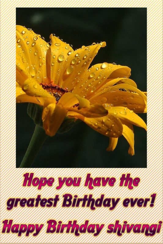 azbirthdaywishes-birthdaypics-25251