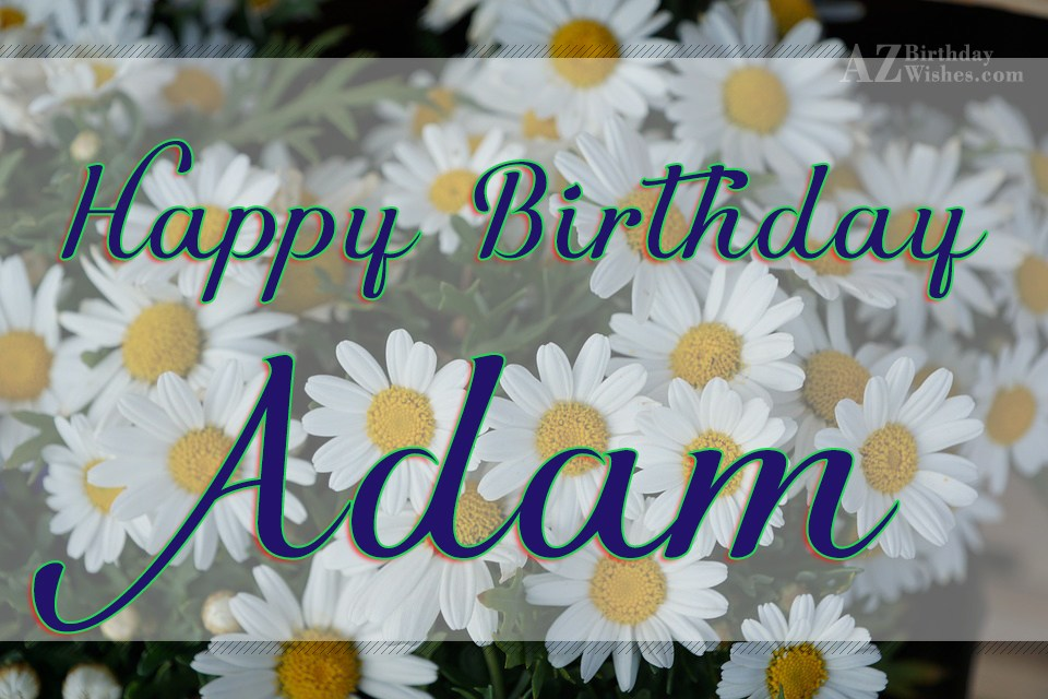 A birthday wish for adam Essay Example - akmcleaningservices com